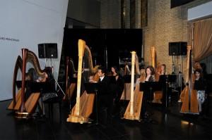 Debut at Royal Ontario Museum (2009)