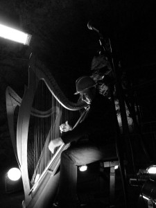 Vincent Zitello, Celtic Harpist, Italy.