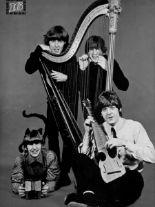 Beatles employed the harp in their song, She is Leaving Home