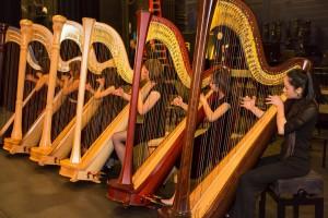Harp Sfinfonia (2015)