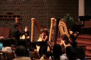 Harp Sinfonia in concert