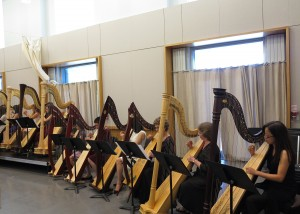 Harp Orchestra 2015 sets
