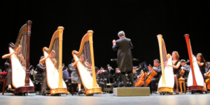 Harp Sinfonia in performance with Philomusica Symphony Orchestra (2015)